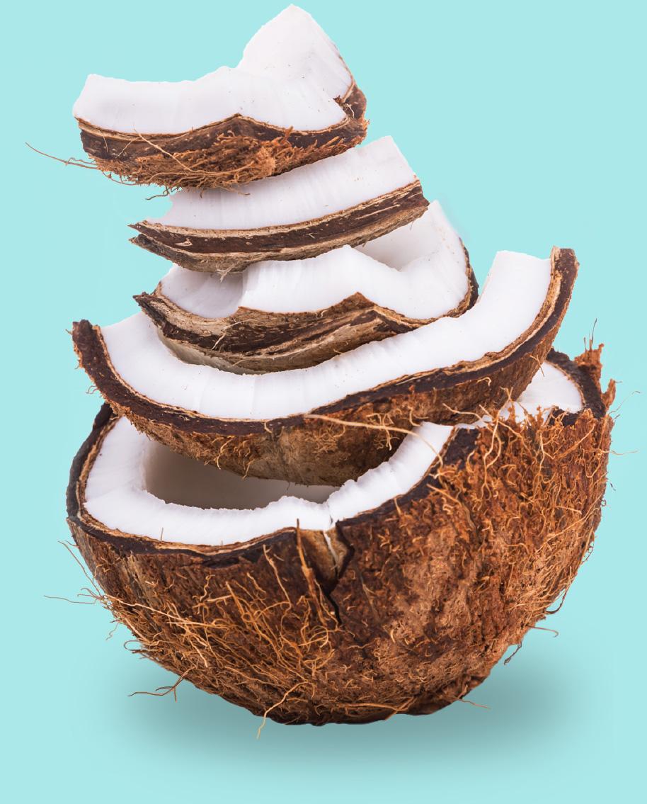 Img-Coconut-001