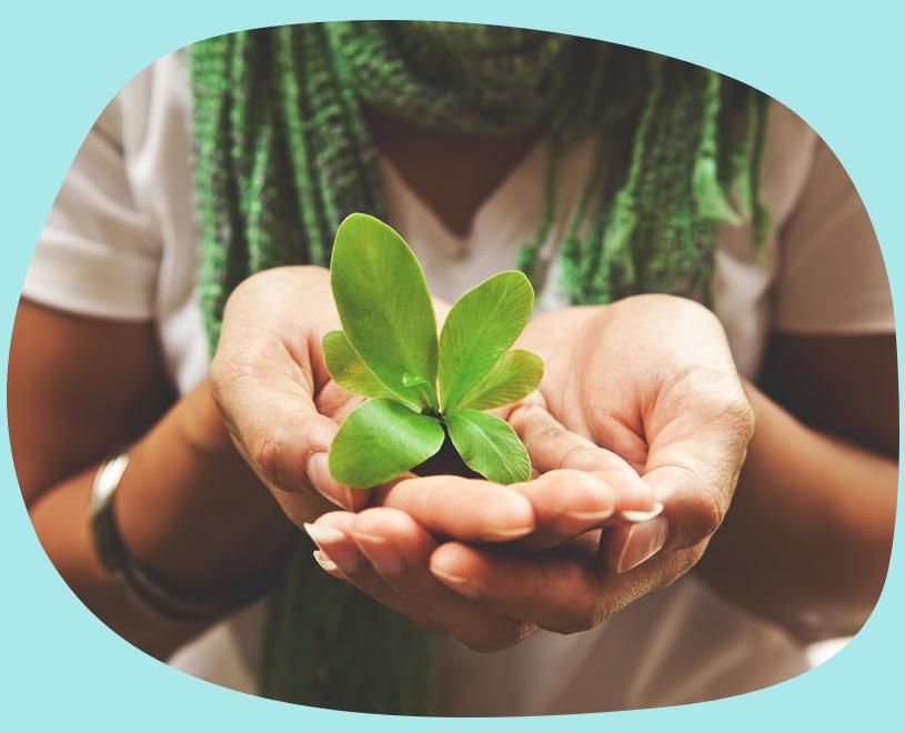 violife plant based diet vegan food